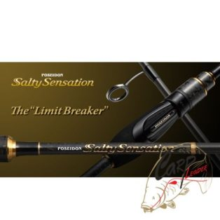 Удилище спиннинговое Ever Green Poseidon Salty Sensation PSSS-77S | Limited Breaker