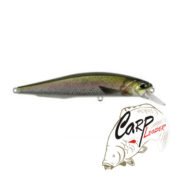 Воблер DUO Realis Jerkbait 120SP CCC3836 Pike Rainbow Trout ND