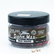Бойлы бойлы для ловли сомов Fun Fishing Giant Max — Bouillettes — Red Squid — 30mm — 270g