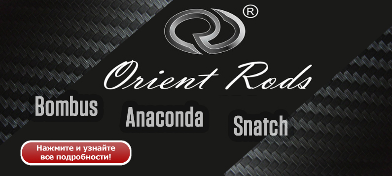 Orient1