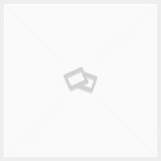 B Fish & Tackle Pulse-R Paddle Tail 3.25